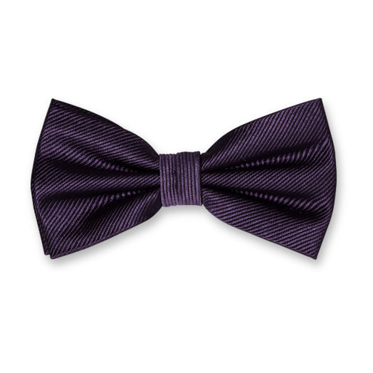 Dark Purple Bow Tie - Silk (1)